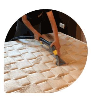 床面除螨範例