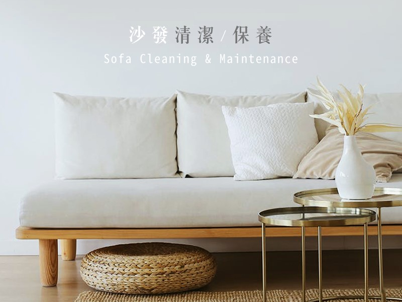 沙發清潔 / 保養